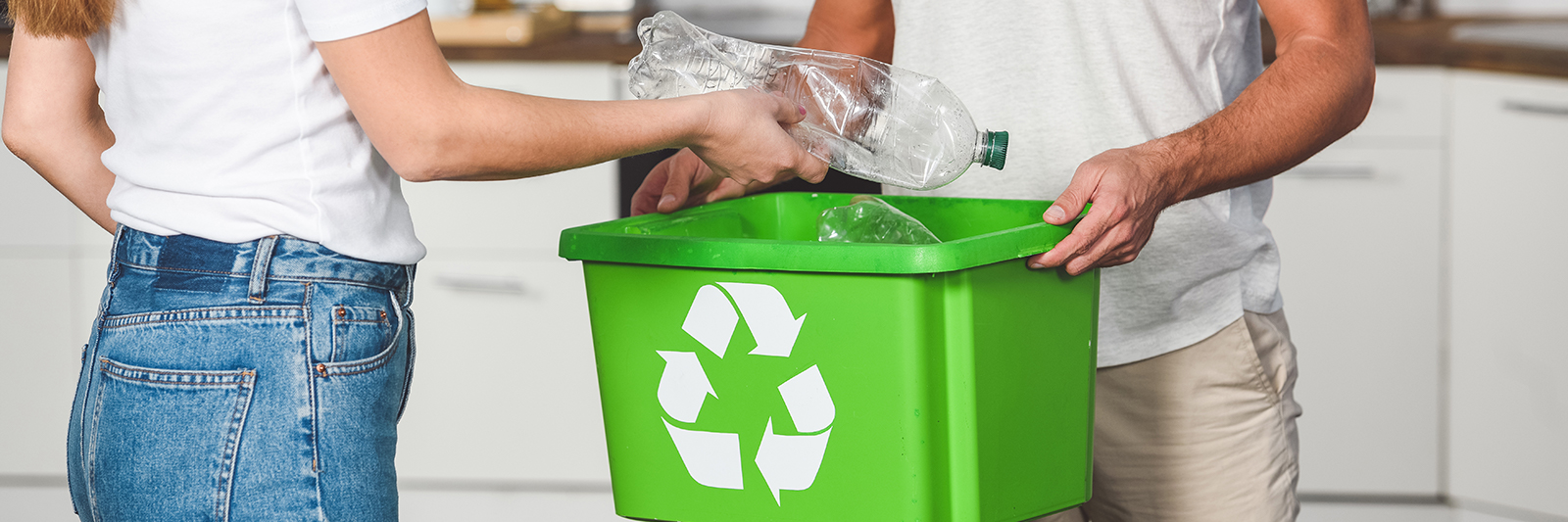 How to Make Your Home More Eco Friendly